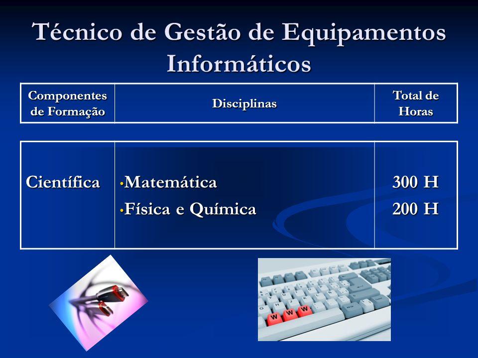 Componentes de Formação Disciplinas Total de Horas Técnico de Gestão de Equipamentos Informáticos Científica Matemática Matemática Física e Química Física e Química 300 H 200 H