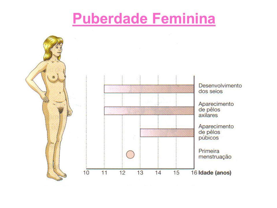 Puberdade Feminina