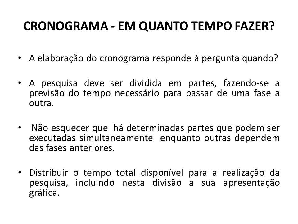 REVISÃO DE LITERATURA - O QUE JÁ FOI ESCRITO SOBRE O TEMA.