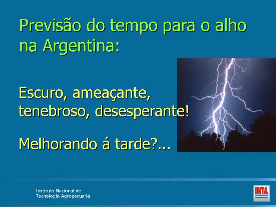 Previsão do tempo para o alho na Argentina: Escuro, ameaçante, tenebroso, desesperante! Melhorando á tarde?...