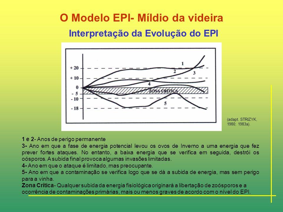 O Modelo EPI- Míldio da videira Cálculo do valor de EPI - EPI da Fase Cinética (Valores Diários) EPI = 0,0l2 U 2 m T- UM 2 TM 100 Um- humidade relativ