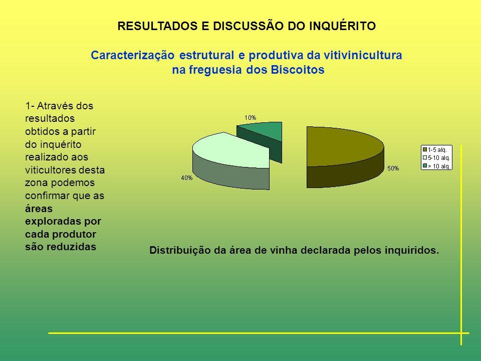 PARTE II- Trabalho Experimental CARACTERIZAÇÃO SUMÁRIA DA REGIÃO VITIVINICOLA DOS BISCOITOS RESULTADOS E DISCUSSÃO DO INQUÉRITO