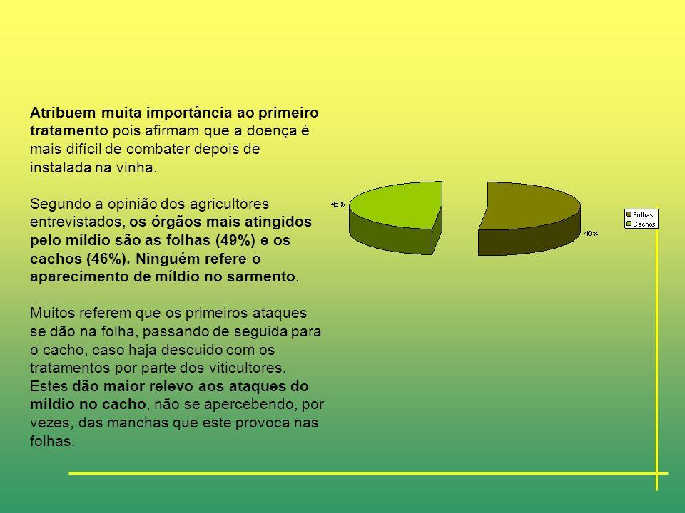 O Míldio Dos entrevistados, 70% responderam que o míldio afectava muito as suas videiras, contrapondo-se 30% cuja resposta foi negativa. Independentem