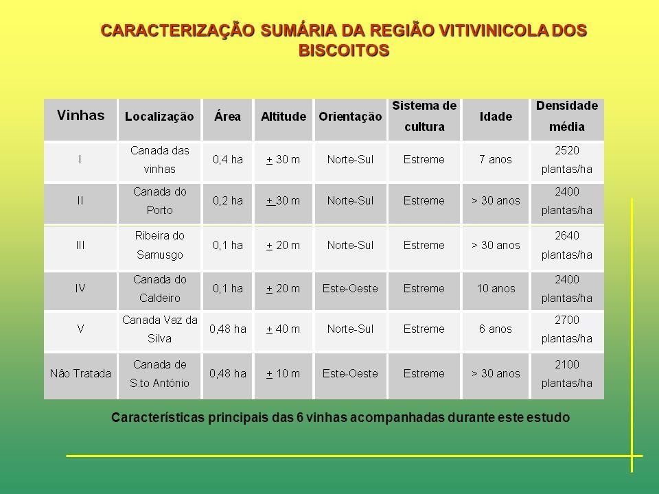 CARACTERIZAÇÃO SUMÁRIA DA REGIÃO VITIVINICOLA DOS BISCOITOS Localização das vinhas de Verdelho estudadas na Região Demarcada dos Biscoitos.