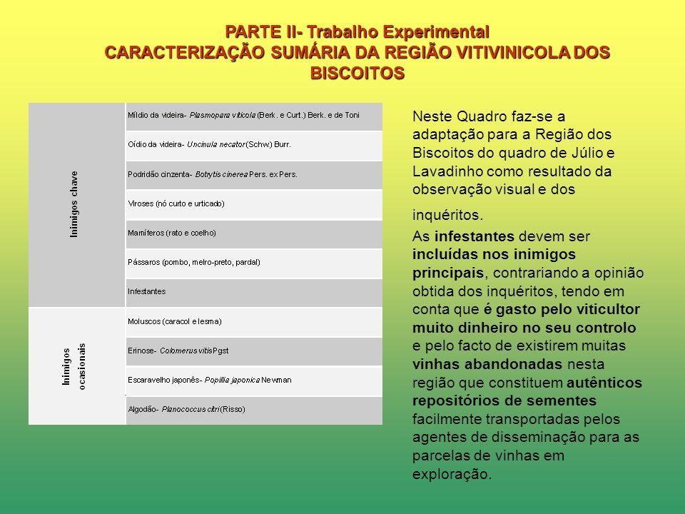 PARTE II- Trabalho Experimental CARACTERIZAÇÃO SUMÁRIA DA REGIÃO VITIVINICOLA DOS BISCOITOS Verificou-se que relativamente aos Inimigo-chave a escorio