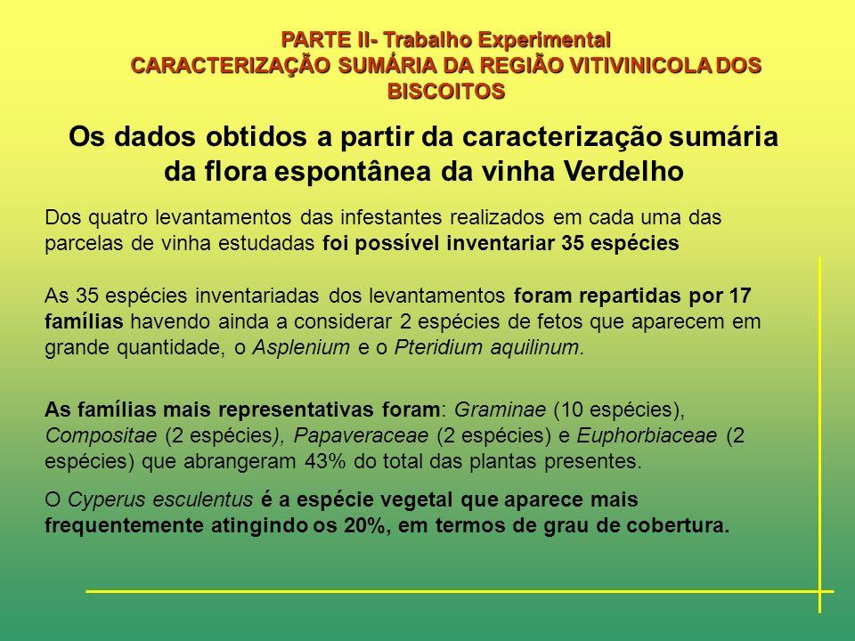 PARTE II- Trabalho Experimental CARACTERIZAÇÃO SUMÁRIA DA REGIÃO VITIVINICOLA DOS BISCOITOS Neste Quadro faz-se a adaptação para a Região dos Biscoito
