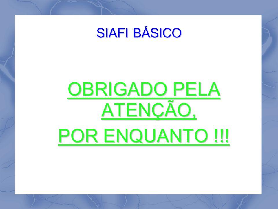 SIAFI BÁSICO OBRIGADO PELA ATENÇÃO, POR ENQUANTO !!!
