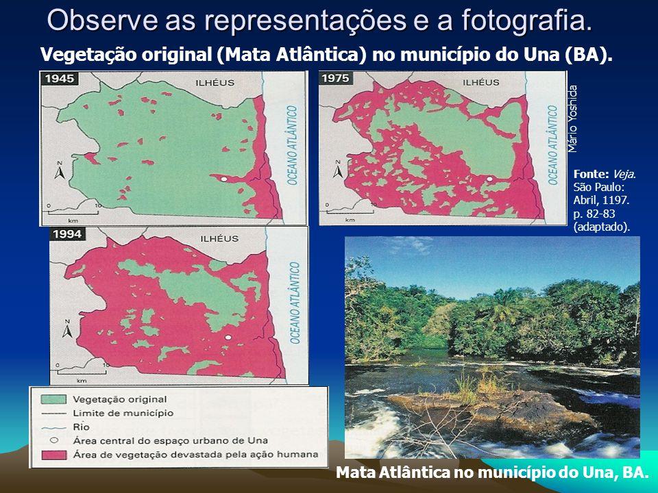 Observe as representações e a fotografia. Vegetação original (Mata Atlântica) no município do Una (BA). Mata Atlântica no município do Una, BA. Fonte: