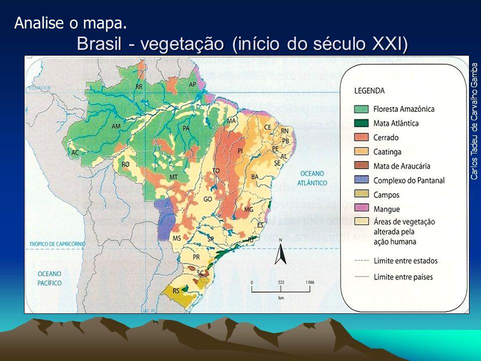 Brasil - vegetação (início do século XXI) Carlos Tadeu de Carvalho Gamba Analise o mapa.