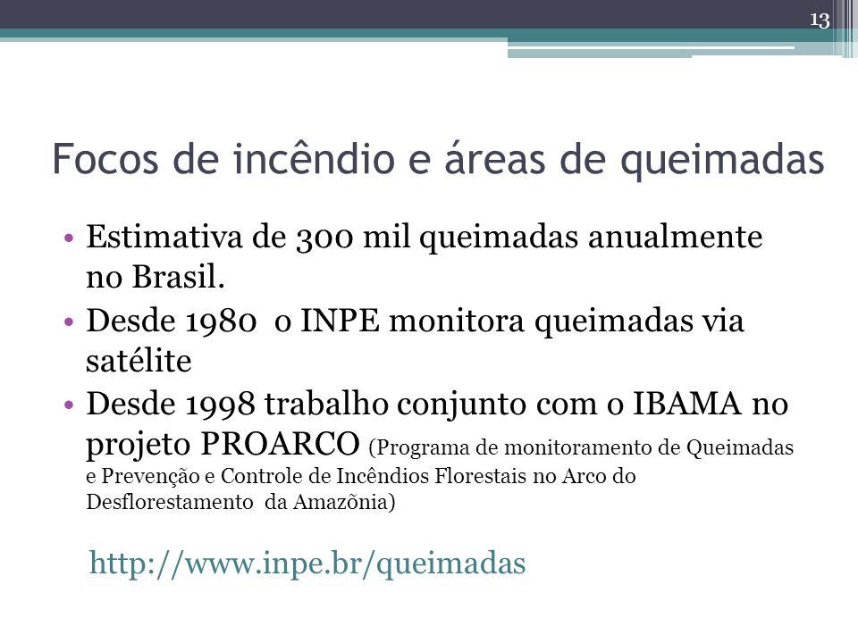 Focos de incêndio e áreas de queimadas Estimativa de 300 mil queimadas anualmente no Brasil.