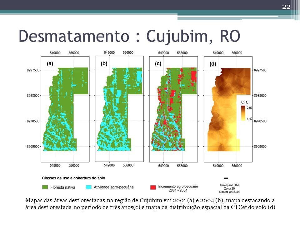 22 Desmatamento : Cujubim, RO Mapas das áreas desflorestadas na região de Cujubim em 2001 (a) e 2004 (b), mapa destacando a área desflorestada no período de três anos(c) e mapa da distribuição espacial da CTCef do solo (d)