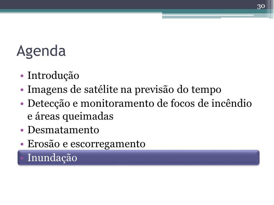 Agenda Introdução Imagens de satélite na previsão do tempo Detecção e monitoramento de focos de incêndio e áreas queimadas Desmatamento Erosão e escorregamento de encostas Inundação 30
