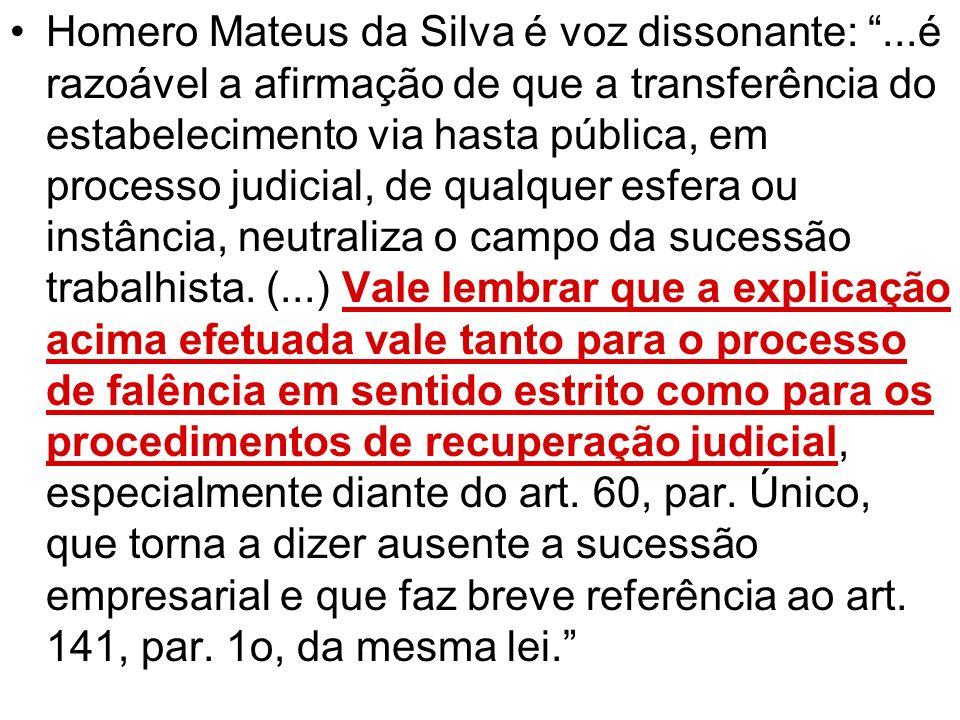 Homero Mateus da Silva é voz dissonante:...é razoável a afirmação de que a transferência do estabelecimento via hasta pública, em processo judicial, d