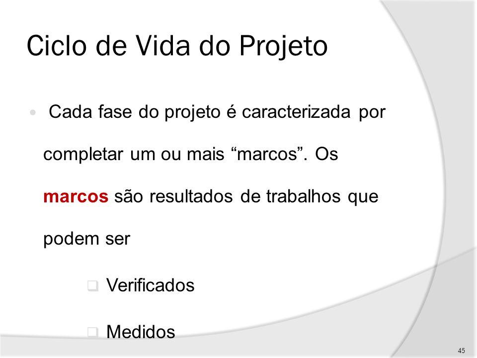 Ciclo de Vida do Projeto Por exemplo, um estudo de viabilidade ou a elaboração de um protótipo.