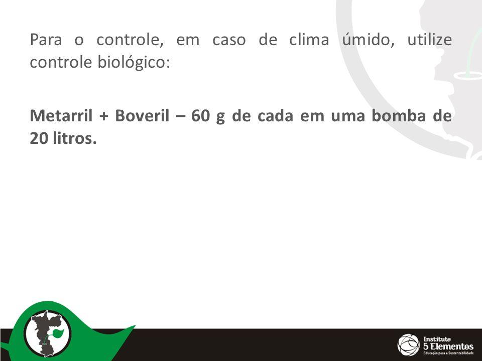 Para o controle, em caso de clima úmido, utilize controle biológico: Metarril + Boveril – 60 g de cada em uma bomba de 20 litros.