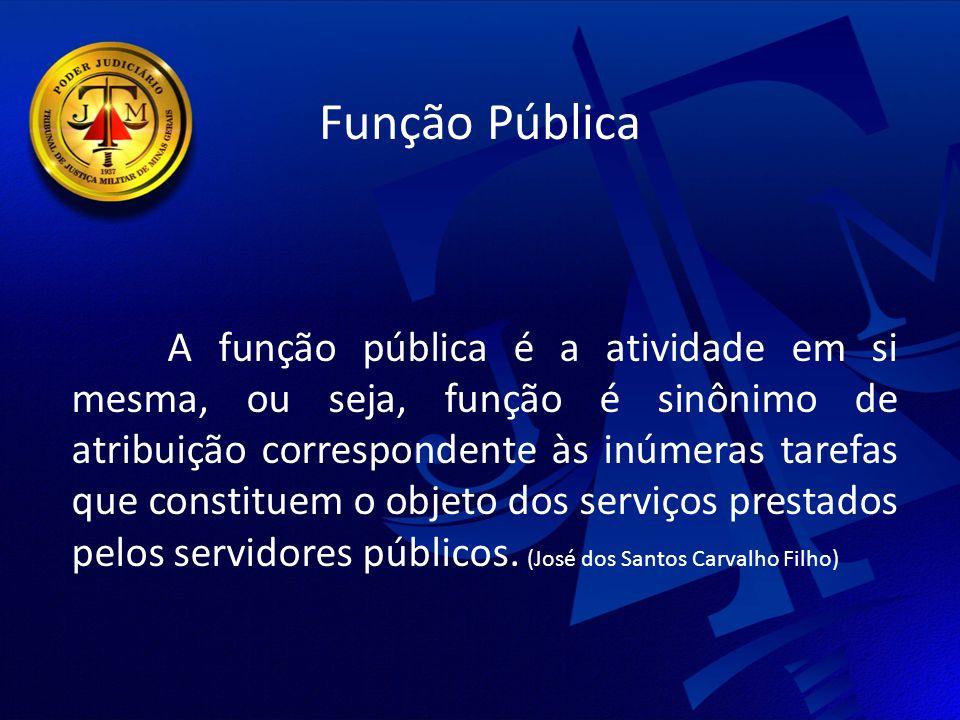 Função Pública A função pública é a atividade em si mesma, ou seja, função é sinônimo de atribuição correspondente às inúmeras tarefas que constituem o objeto dos serviços prestados pelos servidores públicos.