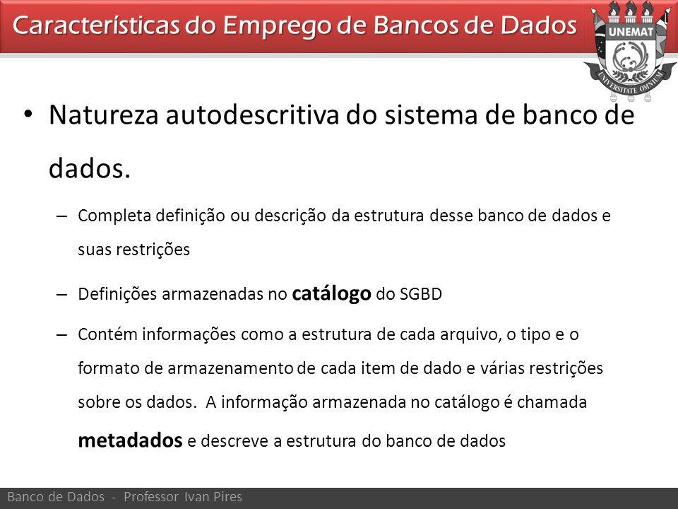 Natureza autodescritiva do sistema de banco de dados. – Completa definição ou descrição da estrutura desse banco de dados e suas restrições – Definiçõ