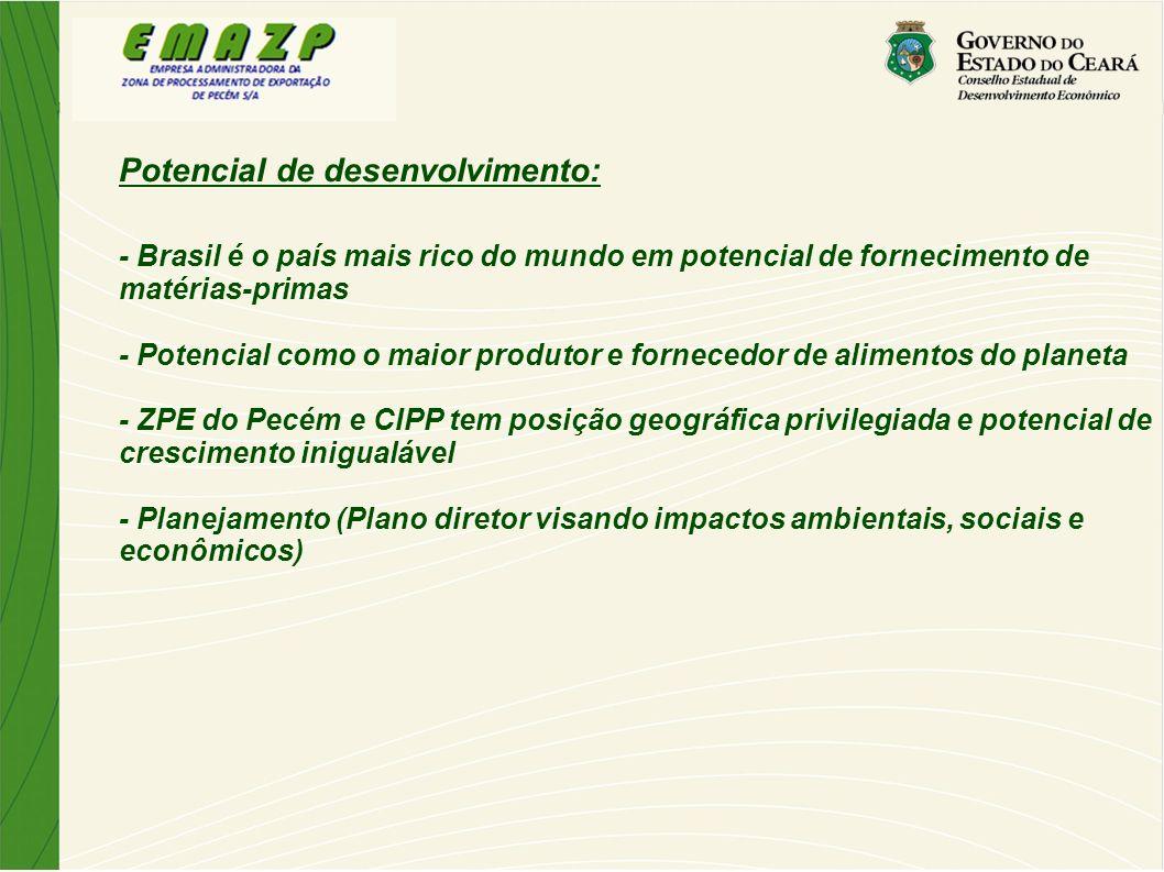 Potencial de desenvolvimento: - Brasil é o país mais rico do mundo em potencial de fornecimento de matérias-primas - Potencial como o maior produtor e