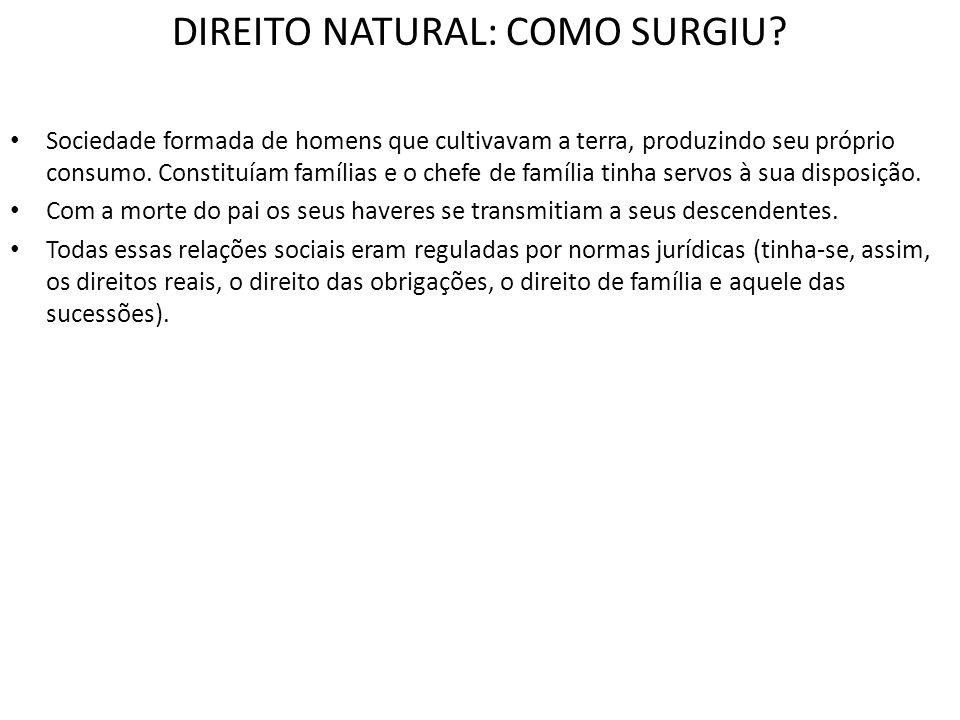 DIREITO NATURAL: COMO SURGIU? Sociedade formada de homens que cultivavam a terra, produzindo seu próprio consumo. Constituíam famílias e o chefe de fa