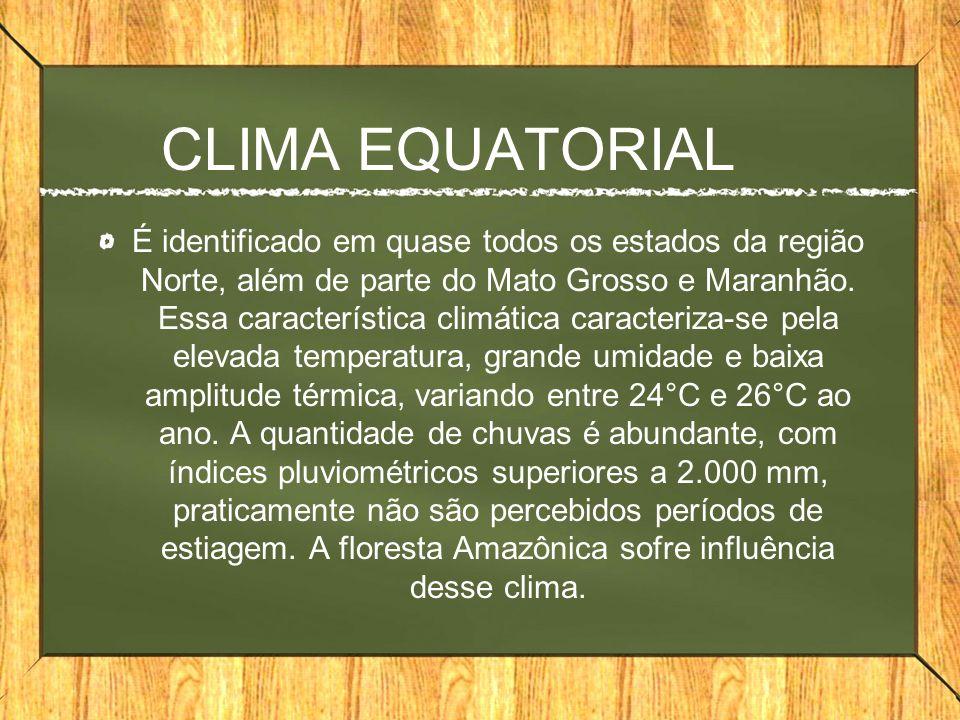 CLIMA EQUATORIAL É identificado em quase todos os estados da região Norte, além de parte do Mato Grosso e Maranhão. Essa característica climática cara