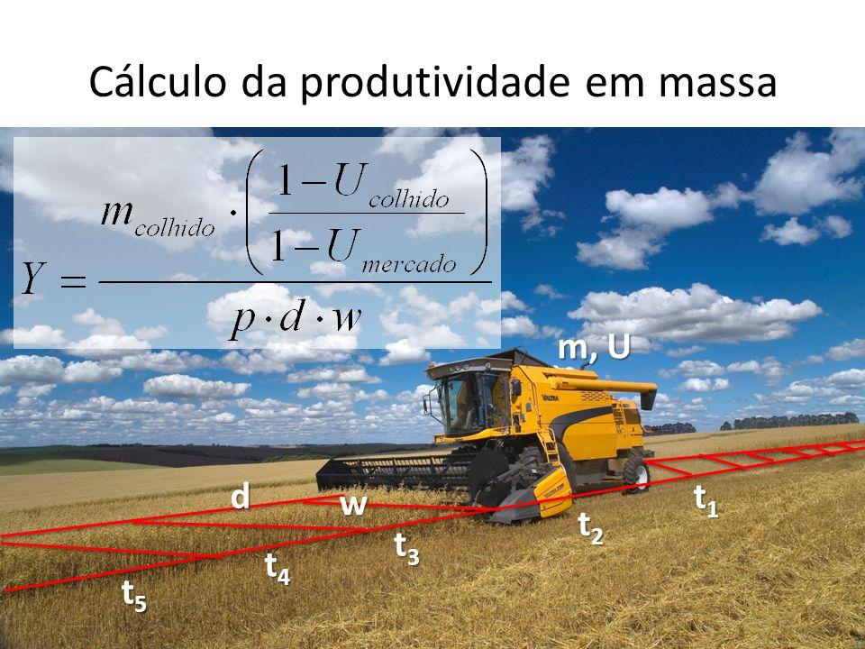 Cálculo da produtividade em massa d w m, U t1t1t1t1 t2t2t2t2 t3t3t3t3 t4t4t4t4 t5t5t5t5