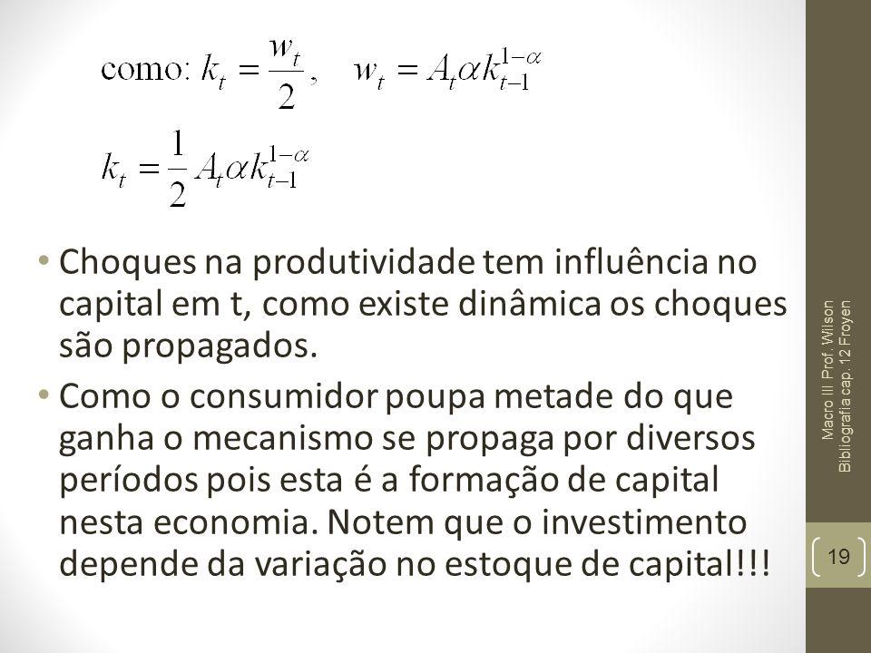 Choques na produtividade tem influência no capital em t, como existe dinâmica os choques são propagados. Como o consumidor poupa metade do que ganha o