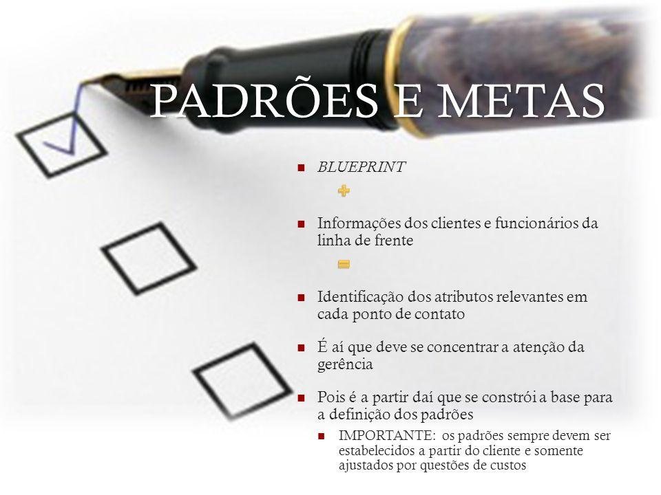 PADRÕES E METAS