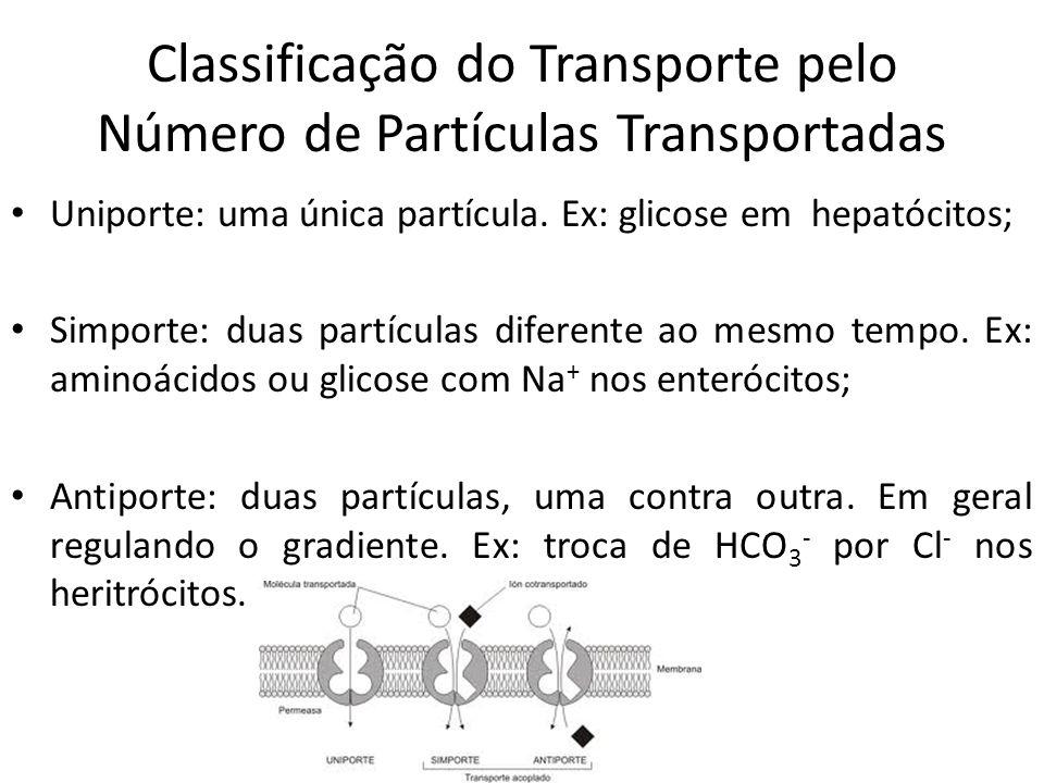 Classificação do Transporte pelo Número de Partículas Transportadas Uniporte: uma única partícula. Ex: glicose em hepatócitos; Simporte: duas partícul