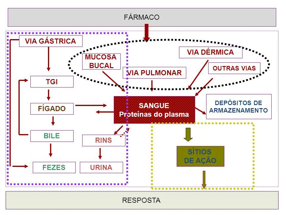 FÁRMACO SANGUE Proteínas do plasma RESPOSTA VIA PULMONAR VIA DÉRMICA OUTRAS VIAS MUCOSA BUCAL VIA GÁSTRICA TGI BILE FÍGADO FEZESURINA RINS SÍTIOS DE A