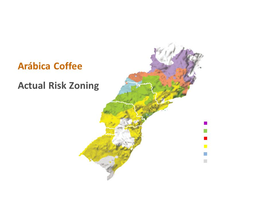 Arábica Coffee Actual Risk Zoning Irrigation Necessary Low Climatic Risk Irrigation Recommended Frost Risk High Temperature Risk High Climatic Risk