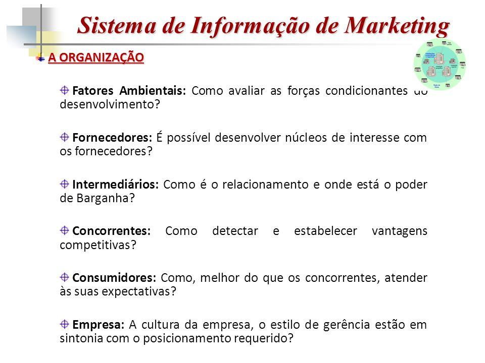 Sistema de Informação de Marketing A ORGANIZAÇÃO Fatores Ambientais: Como avaliar as forças condicionantes do desenvolvimento.