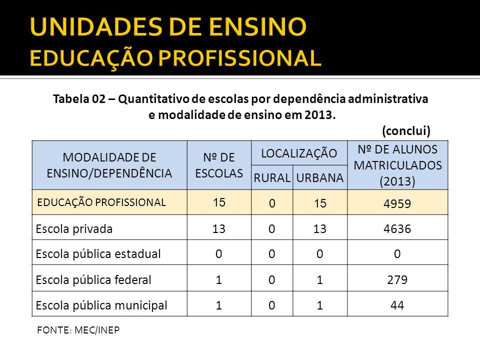 MODALIDADE DE ENSINO/DEPENDÊNCIA Nº DE ESCOLAS LOCALIZAÇÃO Nº DE ALUNOS MATRICULADOS (2013) RURALURBANA EDUCAÇÃO PROFISSIONAL 15 0 4959 Escola privada