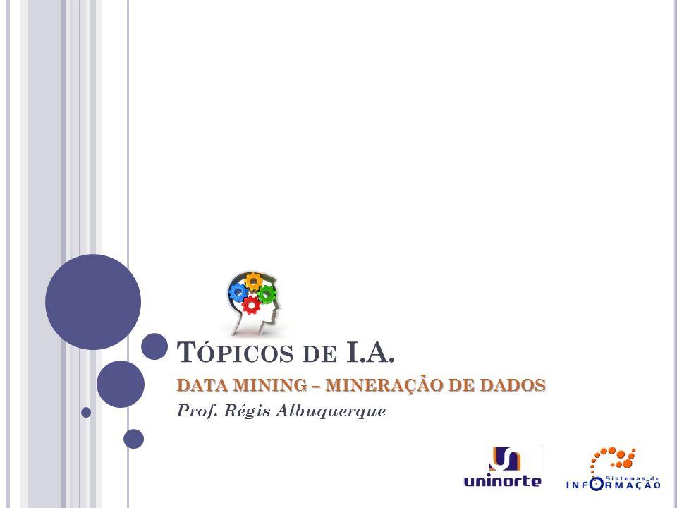 T ÓPICOS DE I.A. DATA MINING – MINERAÇÃO DE DADOS Prof. Régis Albuquerque