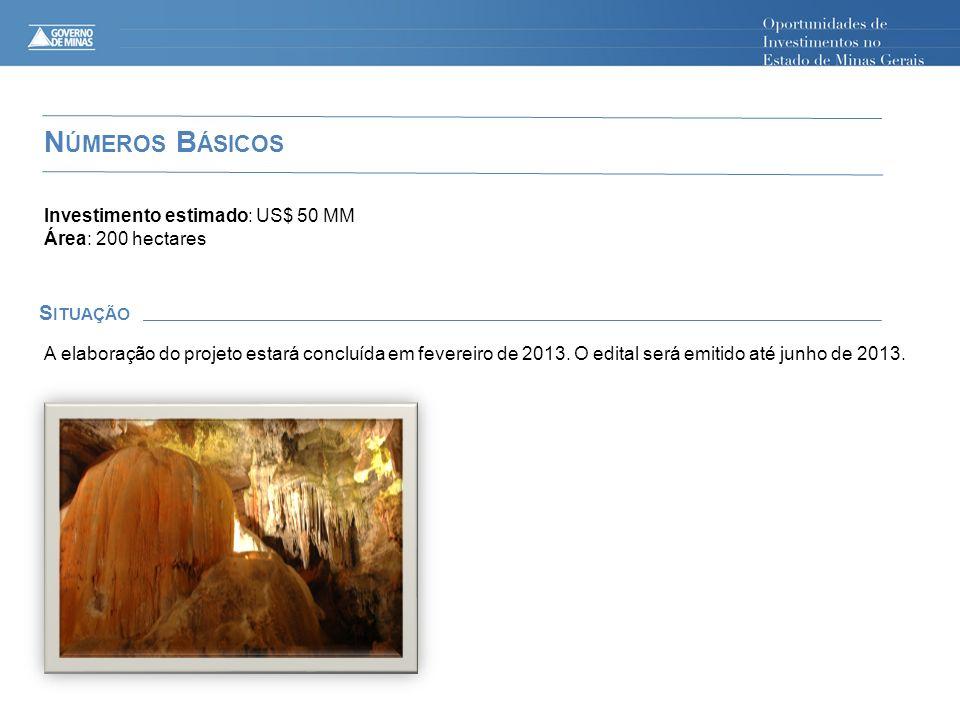 N ÚMEROS B ÁSICOS S ITUAÇÃO Investimento estimado: US$ 50 MM Área: 200 hectares A elaboração do projeto estará concluída em fevereiro de 2013. O edita