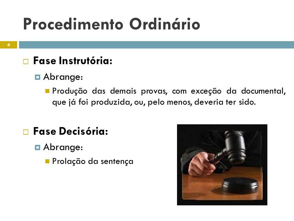 Procedimento Ordinário Fase Instrutória: Abrange: Produção das demais provas, com exceção da documental, que já foi produzida, ou, pelo menos, deveria