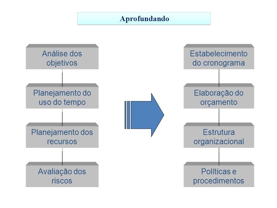 Análise dos objetivos Planejamento do uso do tempo Planejamento dos recursos Avaliação dos riscos Políticas e procedimentos Estrutura organizacional Estabelecimento do cronograma Elaboração do orçamento Aprofundando