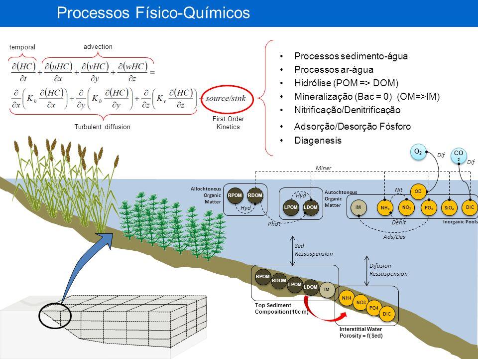 Bacteria (DW:C:N:P) Aerobic Anaerobic Phyto (DW:C:N:P) Diatoms (Si), Green- Algae, Blue-Algae Fish (DW:C:N:P) Planktivorous Onivorous Piscivorous Zoops (DW:C:N:P) Micro Meso Macro Macrophytes (DW:C:N:P) Floating plants non-rooted Floating plants-rooted Emergent Submerged IM OD DIC OM Processos Biológicos