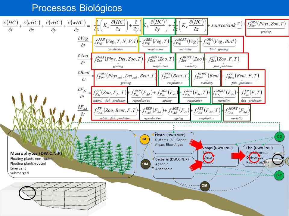 RECURSOS HÍDRICOS E SANEAMENTO Processamento de Modelo Digital de Elevação: direções de fluxo, áreas acumuladas de drenagem, comprimentos de rio.