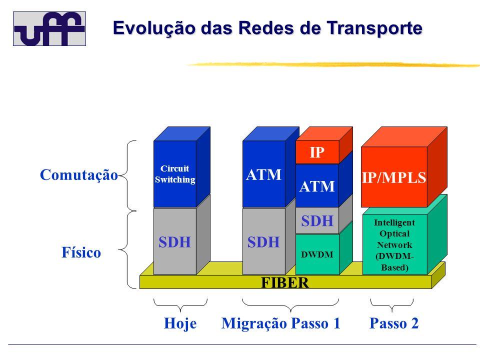 FIBER SDH DWDM SDH Comutação Físico HojeMigração Passo 1Passo 2 SDH Circuit Switching ATM IP Intelligent Optical Network (DWDM- Based) IP/MPLS Evoluçã
