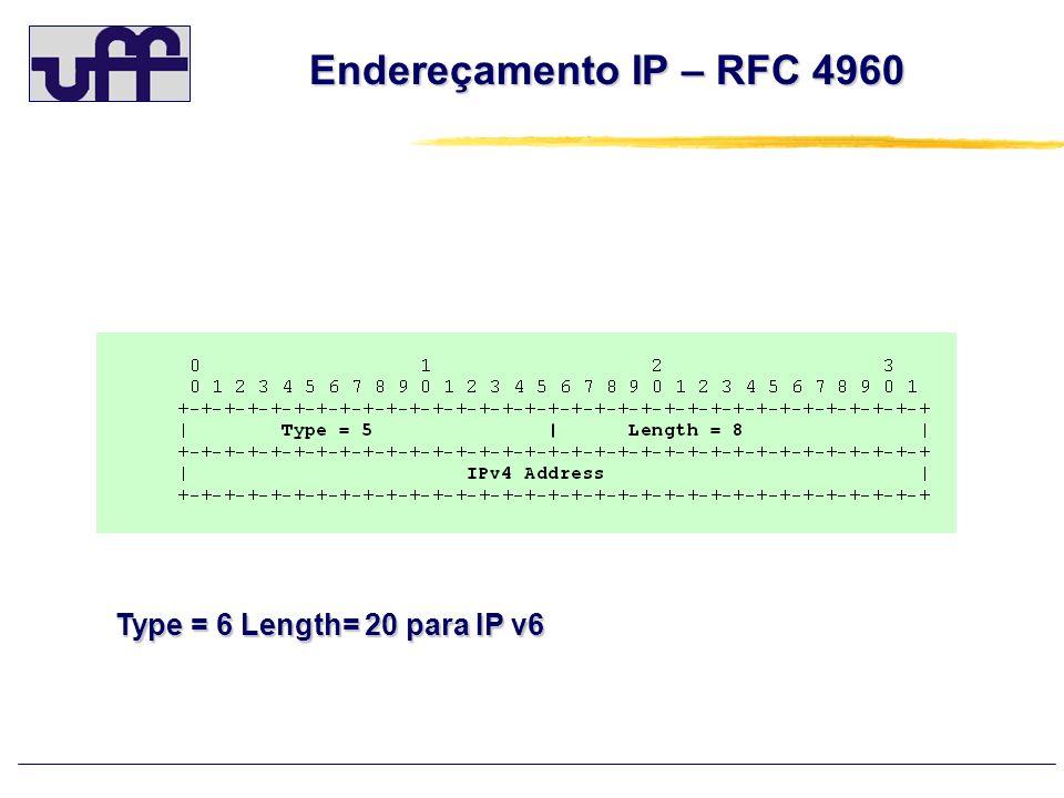 Endereçamento IP – RFC 4960 Type = 6 Length= 20 para IP v6