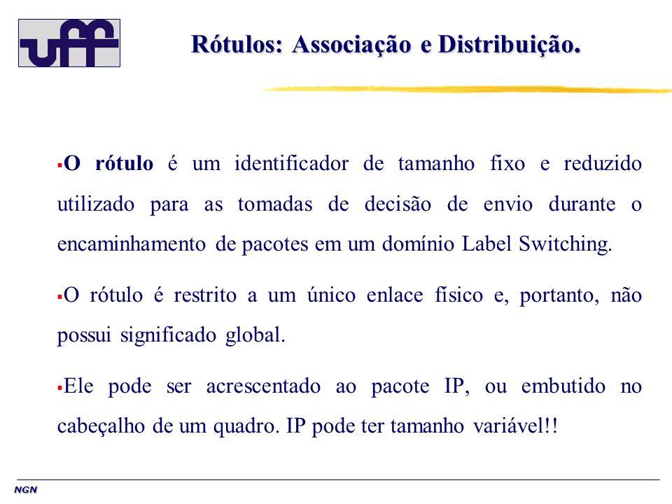 NGN Rótulos: Associação e Distribuição. O rótulo é um identificador de tamanho fixo e reduzido utilizado para as tomadas de decisão de envio durante o