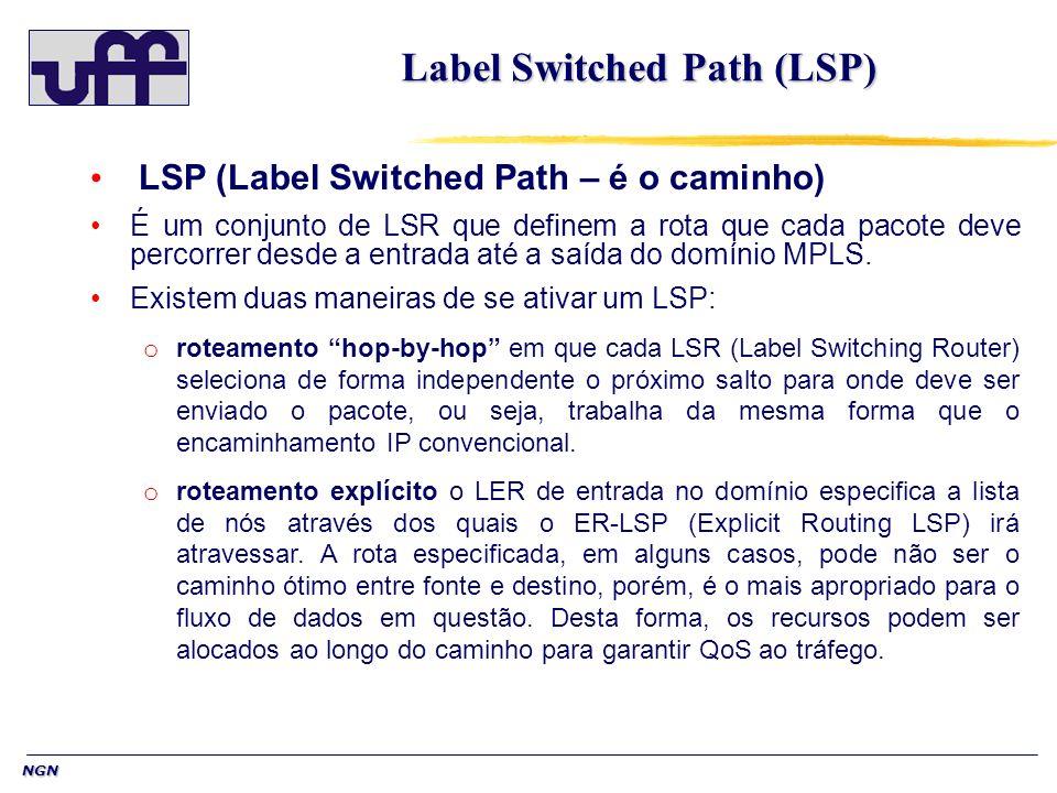 NGN Label Switched Path (LSP) LSP (Label Switched Path – é o caminho) É um conjunto de LSR que definem a rota que cada pacote deve percorrer desde a entrada até a saída do domínio MPLS.