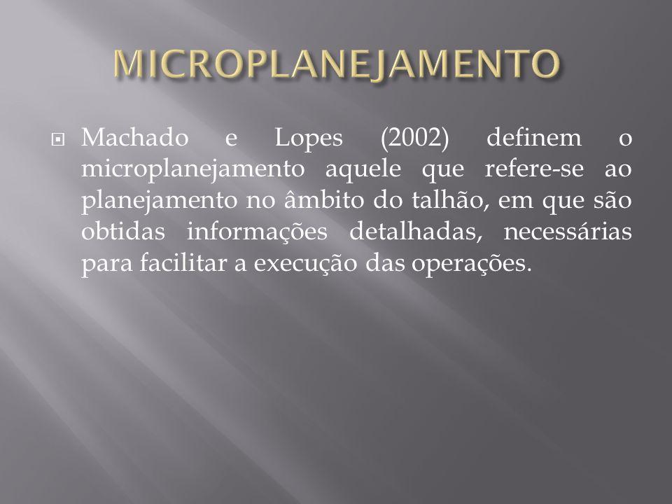 Machado e Lopes (2002) definem o microplanejamento aquele que refere-se ao planejamento no âmbito do talhão, em que são obtidas informações detalhadas