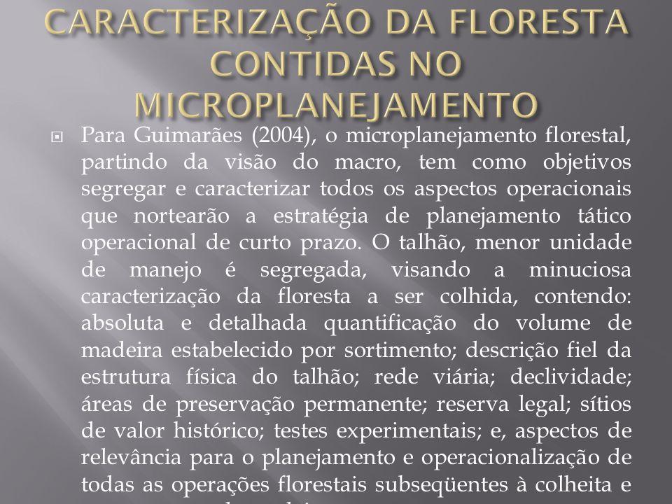 Para Guimarães (2004), o microplanejamento florestal, partindo da visão do macro, tem como objetivos segregar e caracterizar todos os aspectos operaci