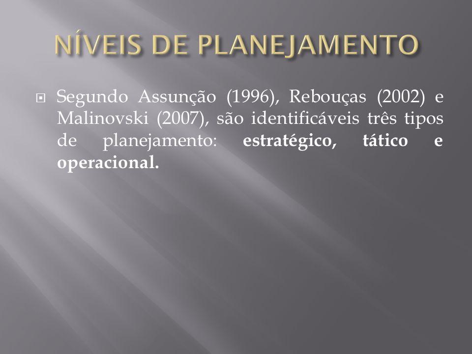 Segundo Assunção (1996), Rebouças (2002) e Malinovski (2007), são identificáveis três tipos de planejamento: estratégico, tático e operacional.