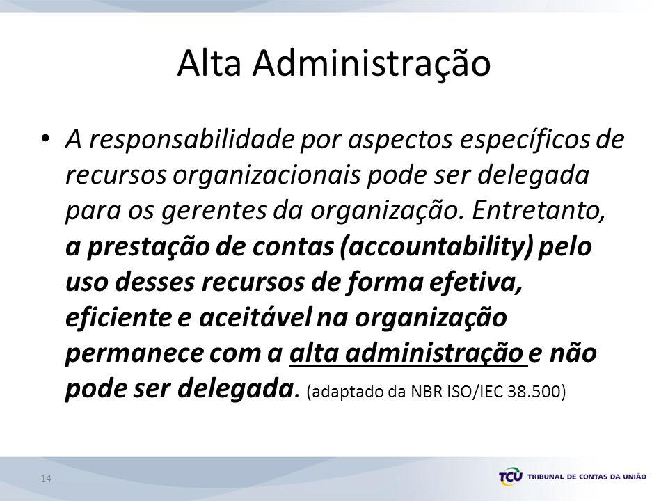14 Alta Administração A responsabilidade por aspectos específicos de recursos organizacionais pode ser delegada para os gerentes da organização.
