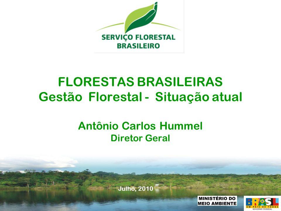- 1 - FLORESTAS BRASILEIRAS Gestão Florestal - Situação atual Antônio Carlos Hummel Diretor Geral Julho, 2010