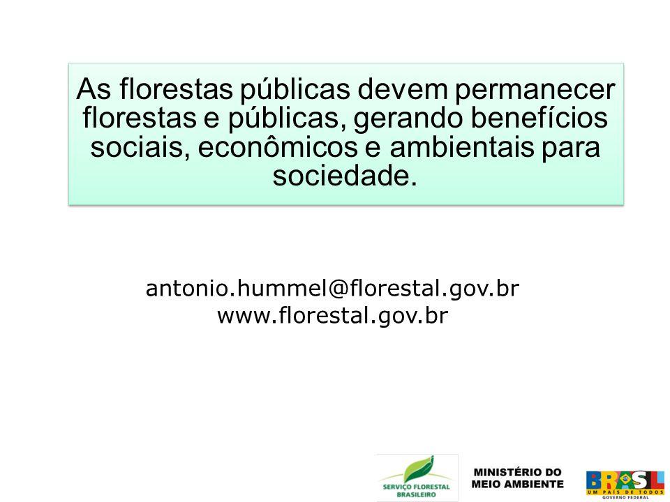 As florestas públicas devem permanecer florestas e públicas, gerando benefícios sociais, econômicos e ambientais para sociedade. antonio.hummel@flores