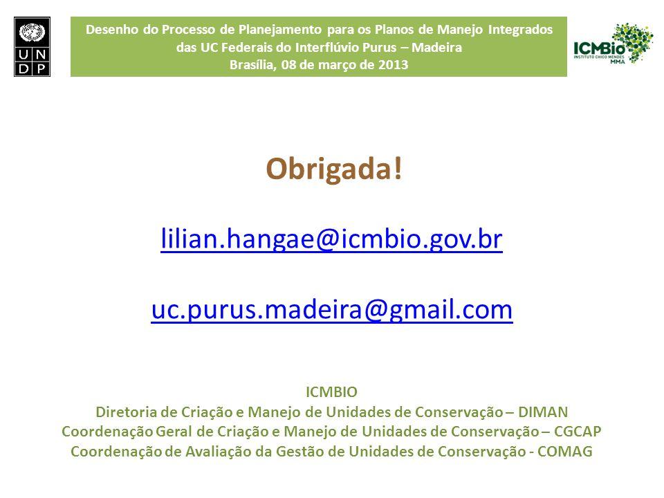 Desenho do Processo de Planejamento para os Planos de Manejo Integrados das UC Federais do Interflúvio Purus – Madeira Brasília, 08 de março de 2013 l