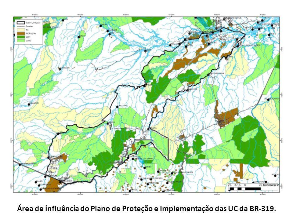 Área de influência do Plano de Proteção e Implementação das UC da BR-319.